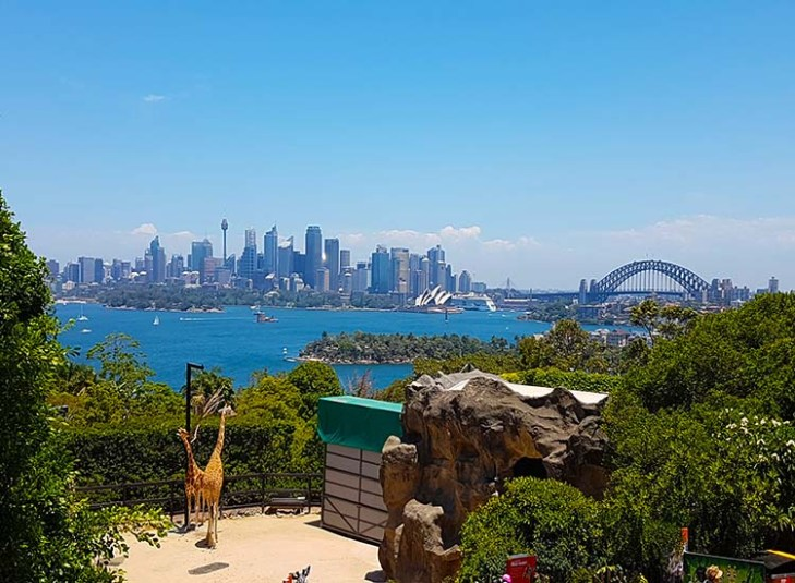 4.-Taronga-Zoo-has-an-abundance-of-green-areas-with-the-picturesque-backdrop-of-nature-at-the-footsteps-of-the-harbour-bridge-1.jpg