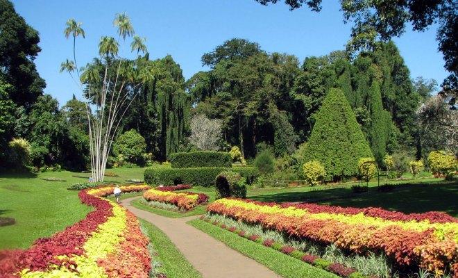 Penang-Botanical-Gardens.jpg
