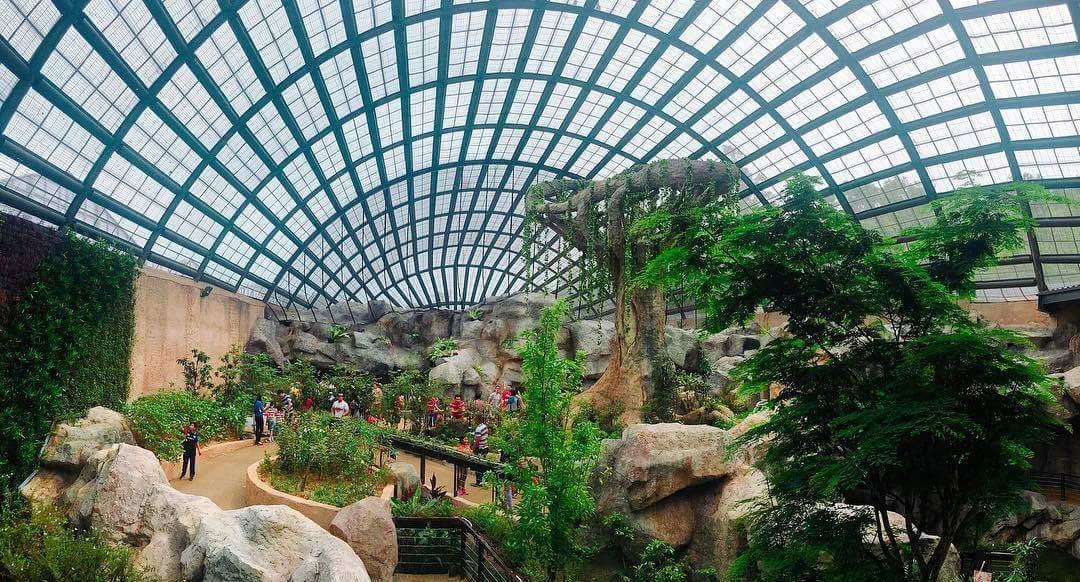 penang-butterfly-farm-dome.jpg